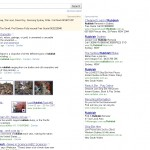 Google New Search results Page
